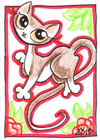 Pretty cat is prancing by KingZoidLord
