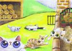 Funny cat farm