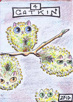 Funny cats Cat Dictionary catkin by KingZoidLord