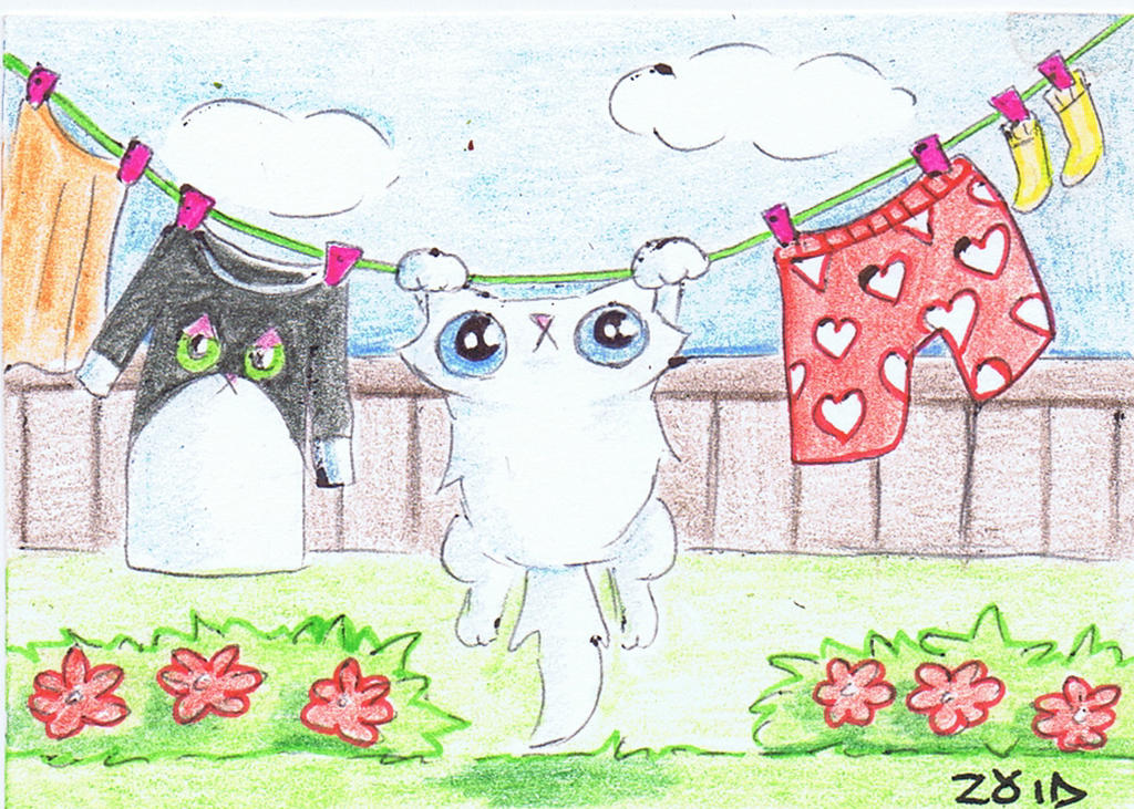 Funny cat is hung out to dry by KingZoidLord