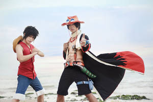 One Piece - Brotherhood by vaxzone