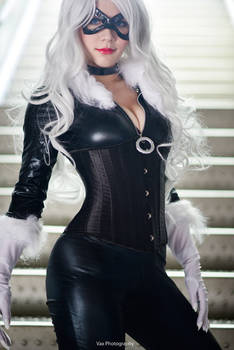 Felicia Hardy - Black Cat