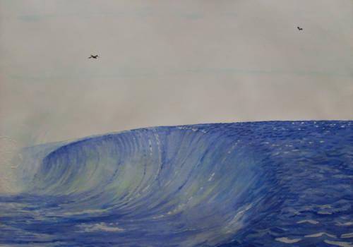 Hawaii wave