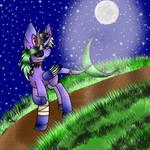 Chiara walking in the moon