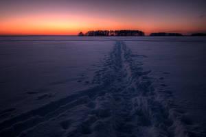 Choose Your Path by HEKOHEKO