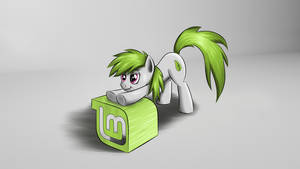 Linux Mint Pony