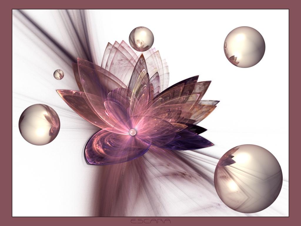 Pearl_Lily by Escara40