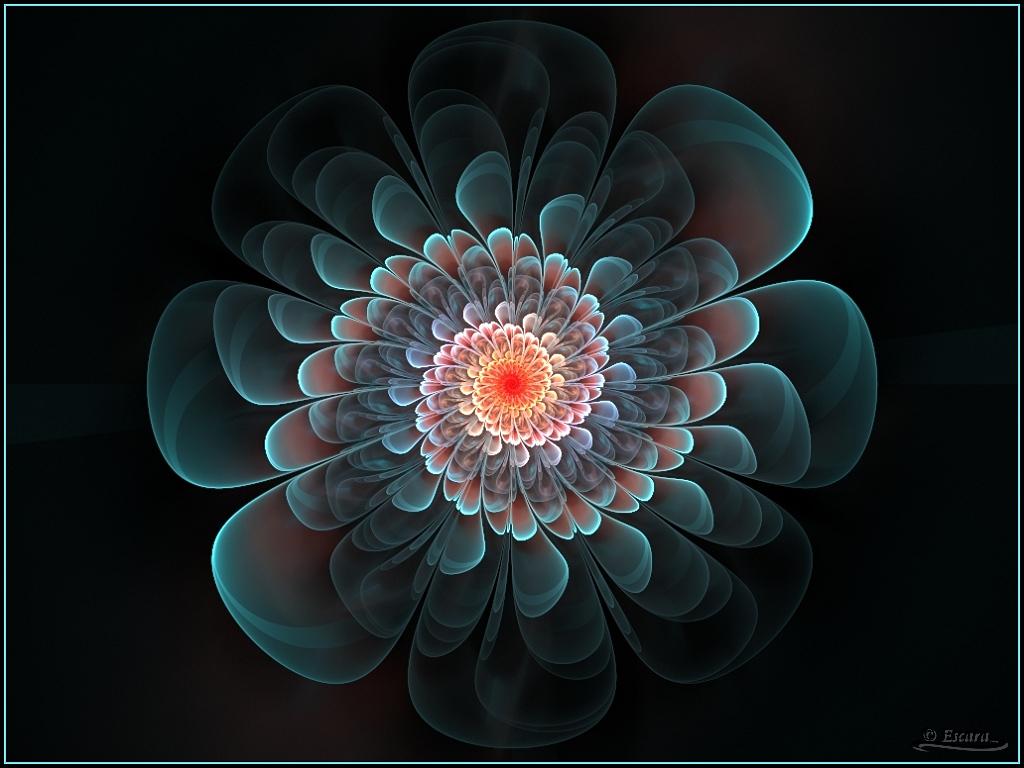 Frozen Flower by Escara40 on DeviantArt