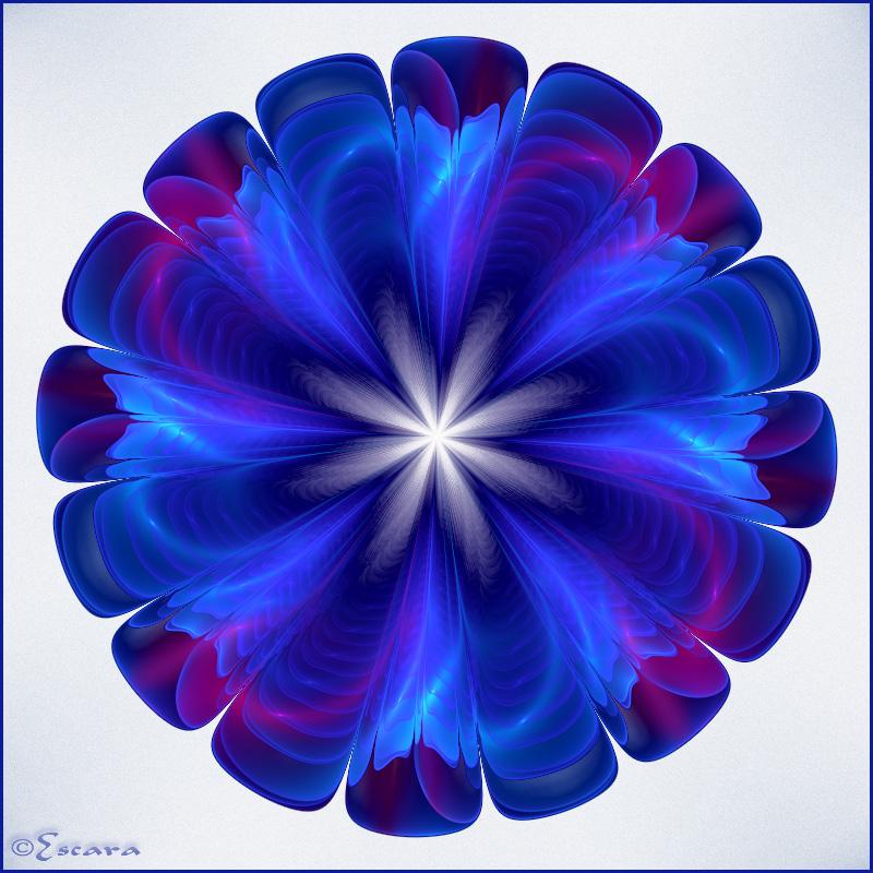 Blue Petunia by Escara40