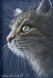 Lunchbrake sketch: Cat in the dark by w176