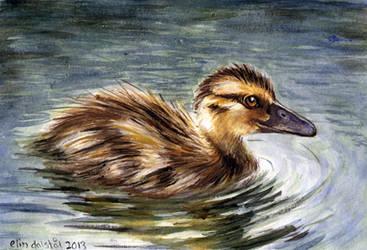 Duckling for grandma by w176