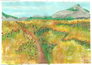 Fields by brittanyandalvin