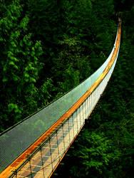 Capilano Bridge by oliveoil363