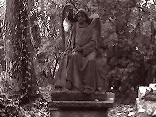 Silent Mourner