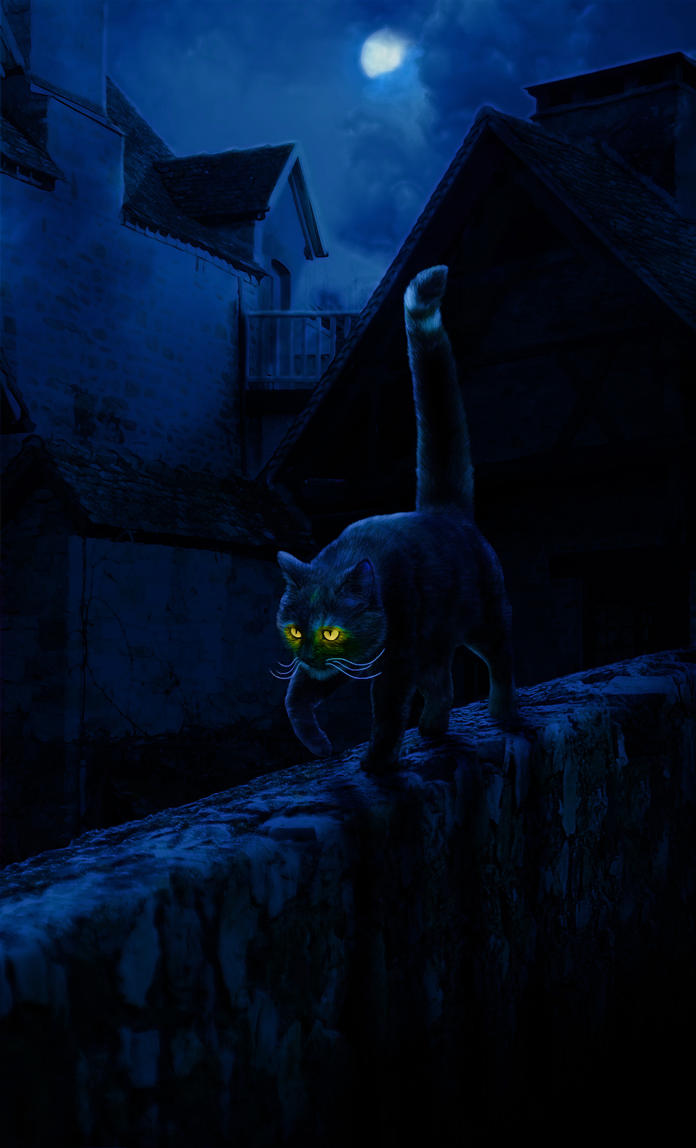 Shadow Stalker by Nejija
