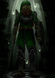 Bearer of the triforce