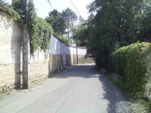 Street of dreams - Sunny peaceful summer