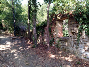 The ruins on the path to the forest
