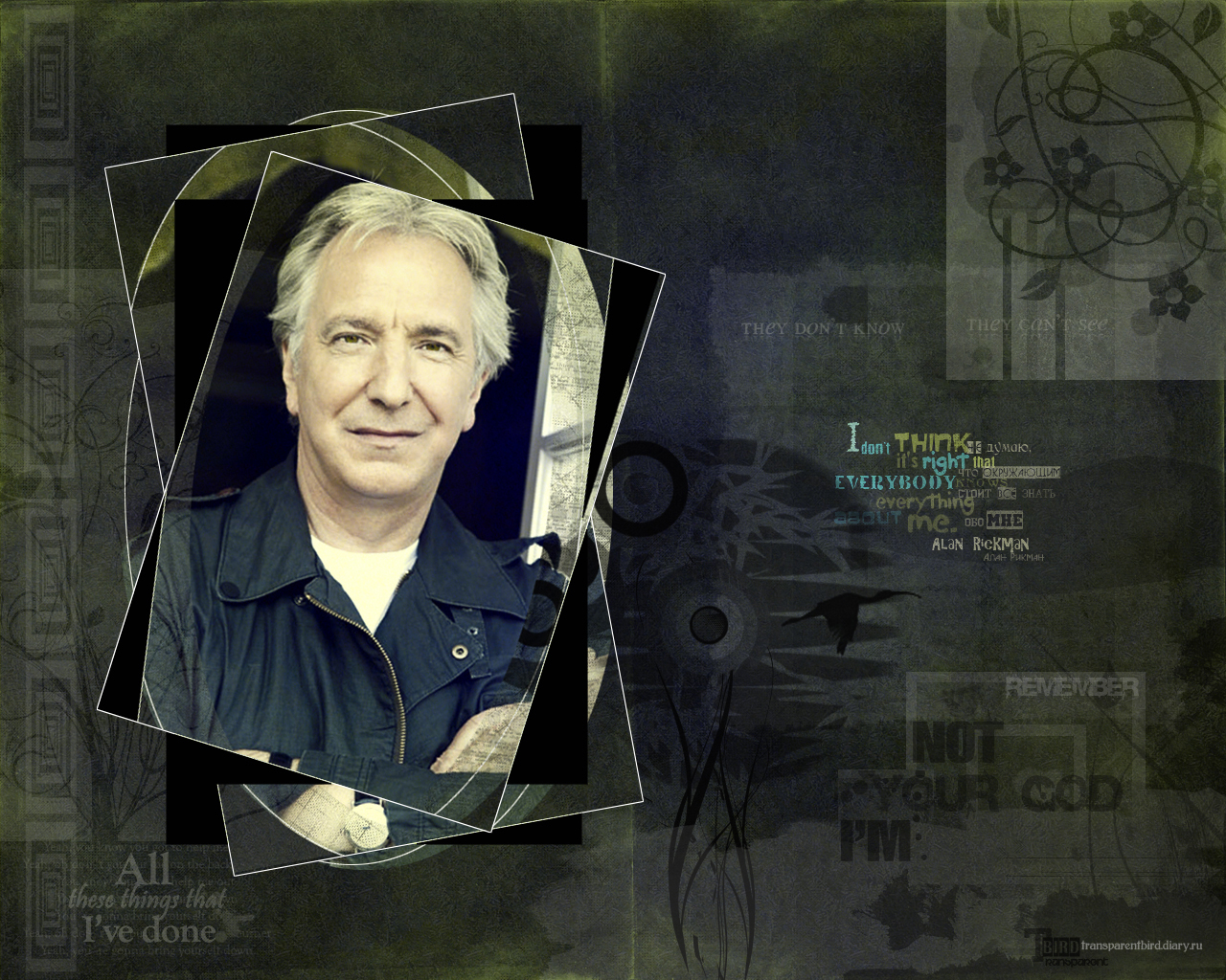 Alan Rickman - wallpaper 3-1 by transparentbird
