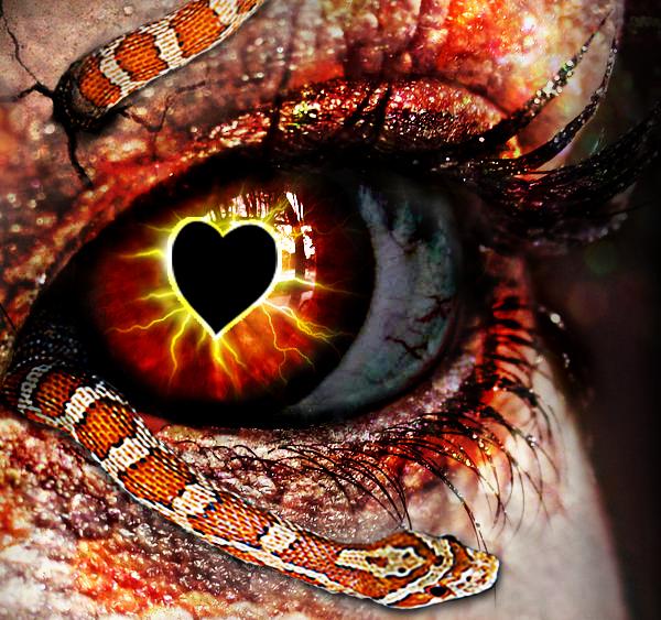 funny-snake-love-fight | SIDDESH A T | Flickr