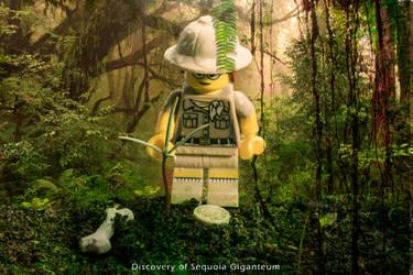 Discovery of Sequaiadendrom Giganteum - Lego World