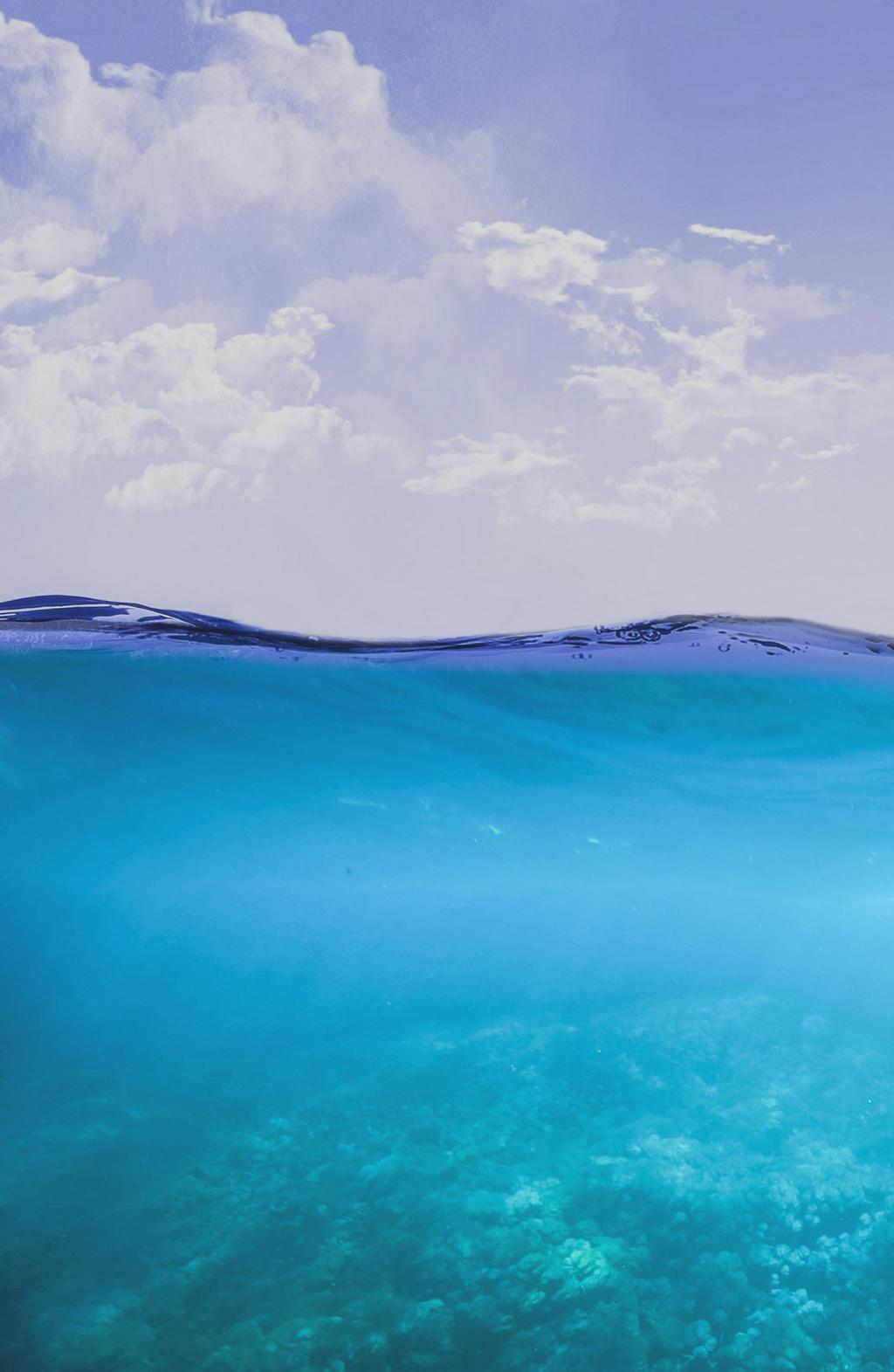 2 Underwater HD 2K Vertical image
