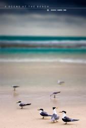 A Scene At The Beach by Saurav