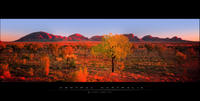 Central Australia Panorama by Saurav