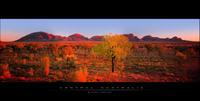 Central Australia Panorama