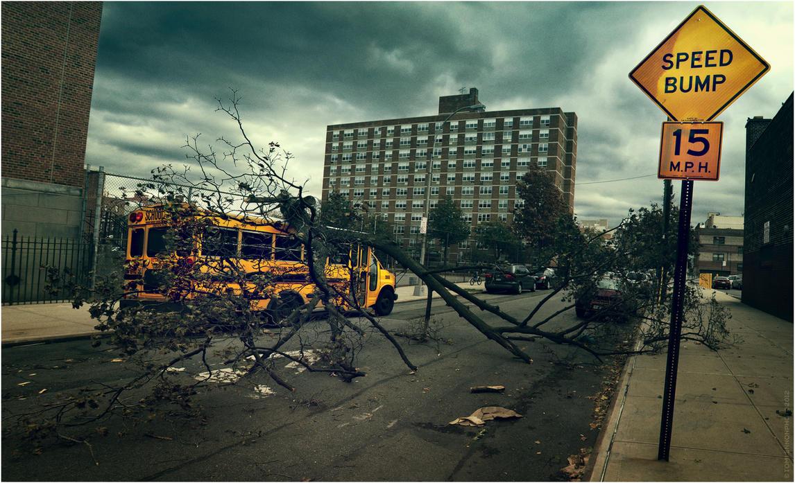 Hurricane Sandy Branch by crunklen