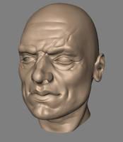 Face sculpt, alternate angle by kordal