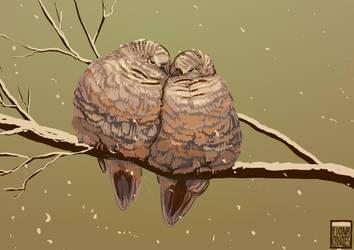 Bird Commish - Kamiki by FionaCreates