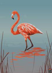 Flamingo for Oddrang by FionaCreates