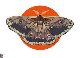 Moth by FionaCreates