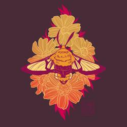 Bee Hawk-Moth