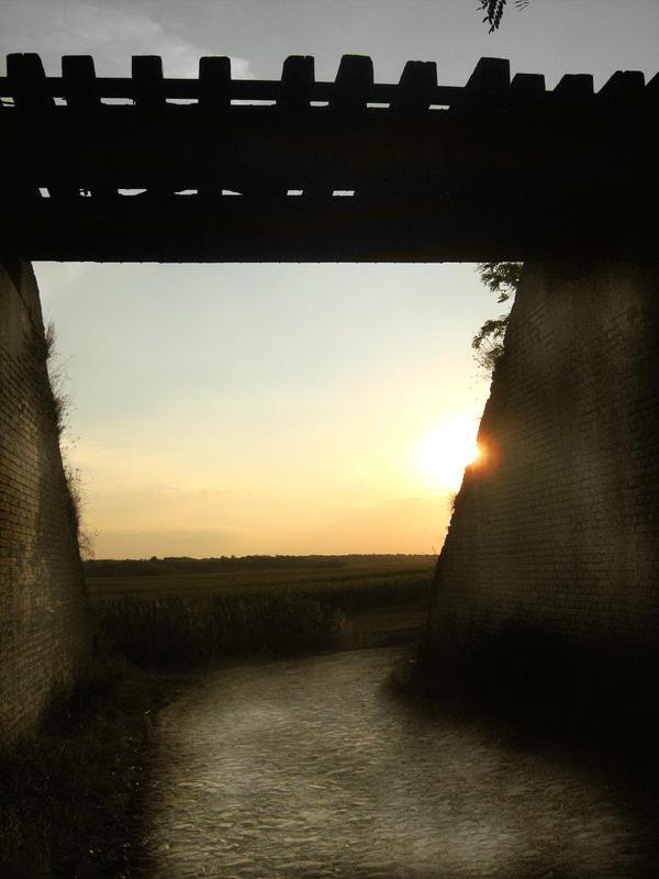 Bridge by Apex7