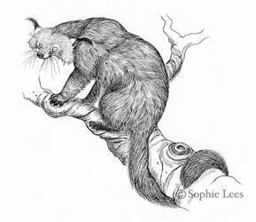 Bearcat by MO-ffie