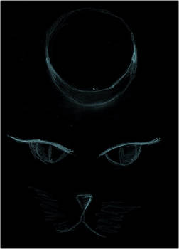 gato lunar