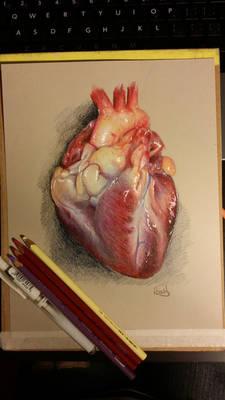 Photorealistic Heart