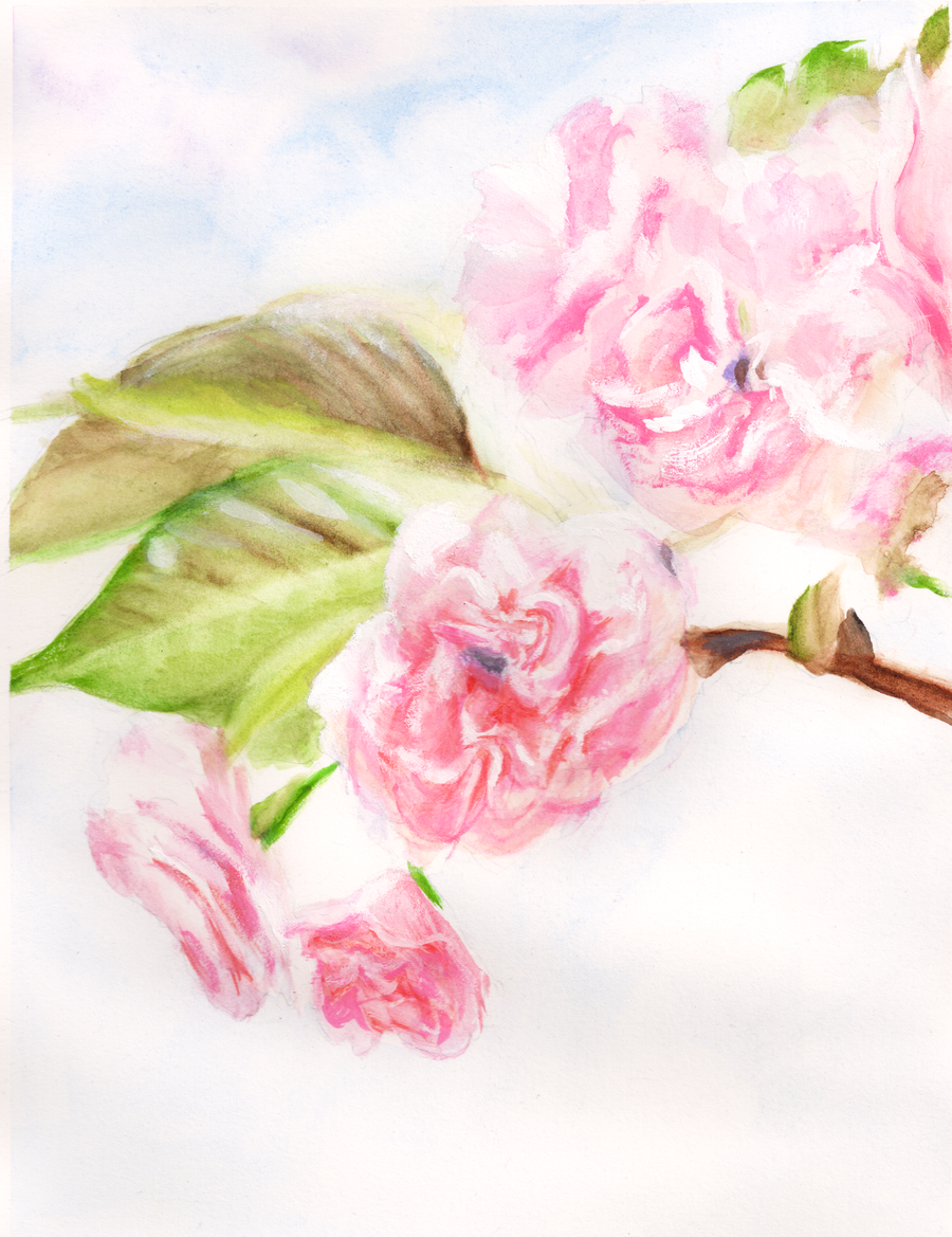 Pink flowers painting by sadesper on deviantart mightylinksfo