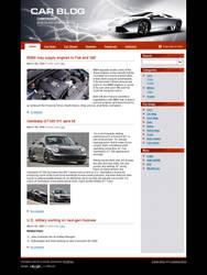 Website Template N 014 by colorifer