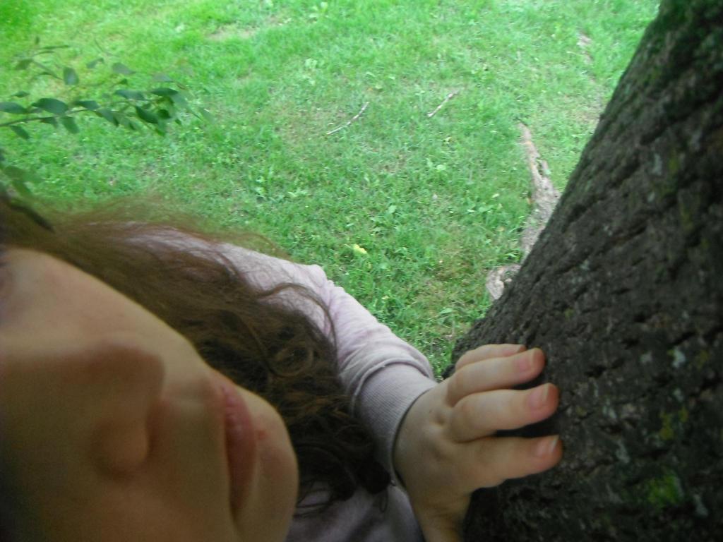 TreeSpirits by Pixie-Nyxie