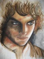 Frodo Baggins by cpn-blowfish