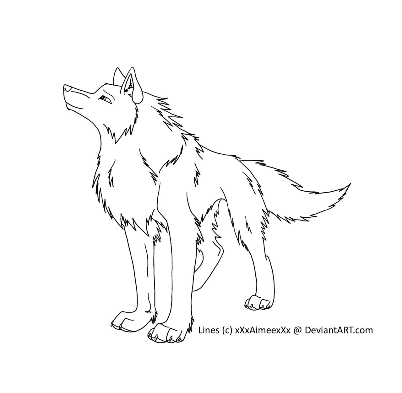 Wolf Lineart : Wolf lineart by xxxaimeexxx on deviantart
