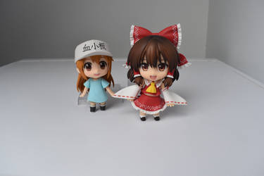 platelet and reimu