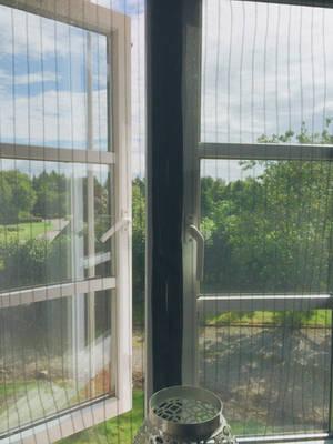 vinduen by sassysweden