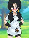 Dragon Ball - Videl 10