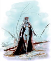 Winter Queen by goor