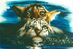 Tiger II by goor