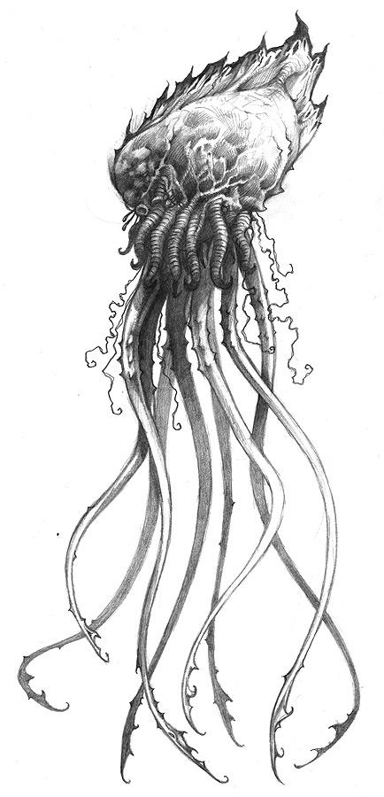 Jellyfish Drawing Tattoo By Jasonheeley
